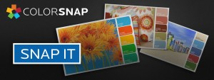 Sherwin Williams snap-it-banner